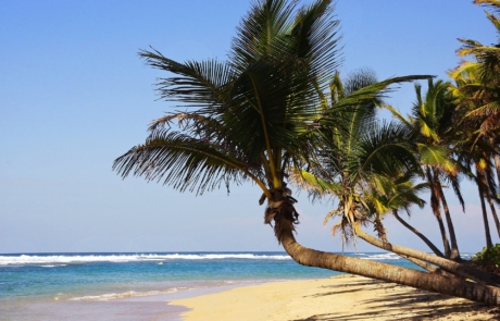 Viaje fin de curso a Punta Cana. Viajes para grupos a Punta Cana, Caribe