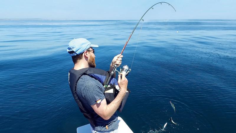 Pesca de fondo en Albufeira. Pesca en barco en el Algarve. Despedidas de soltero y soltera en el Algarve